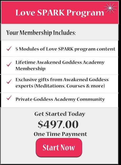 Buy Now SPARK Society Full 497