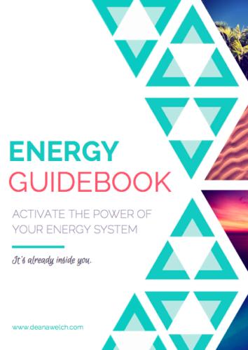 Deana Welch Energy Workbook